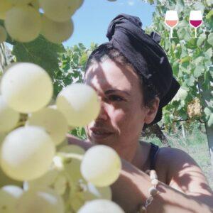 mariapaola dicato vite storie di vino e di donne