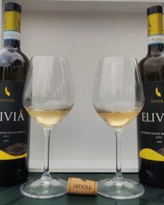 lefiole vini degustazione oltrepo pinot grigio elivia