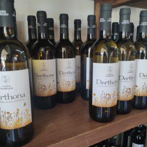 degustazione vini cascina giambolino
